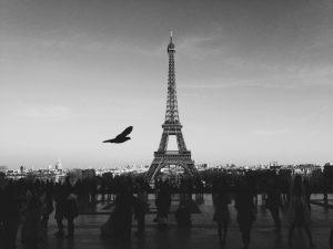 Francoska vlada bo zakonito dostopala do socialnih omrežij državljanov. Vir: Louis Pellissier/Unsplash